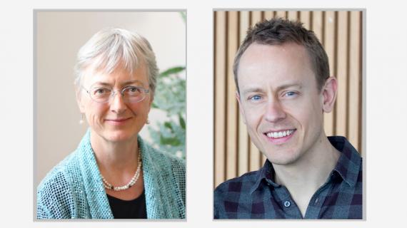 Mod, mildhed og mindfulness i moderne psykoterapi – 3 dags workshop